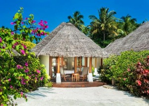 Island Cottage, Sheraton Maldives Full Moon Resort & Spa