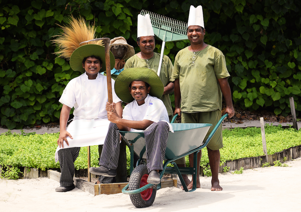 Chefs and gardening team working together, Six Senses Laamu